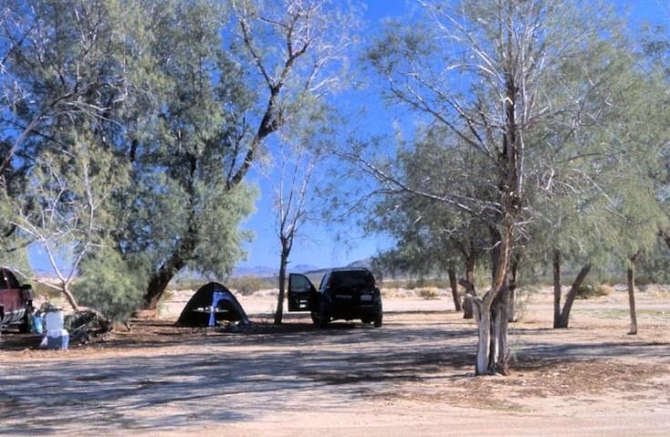 dunes camp (Medium)