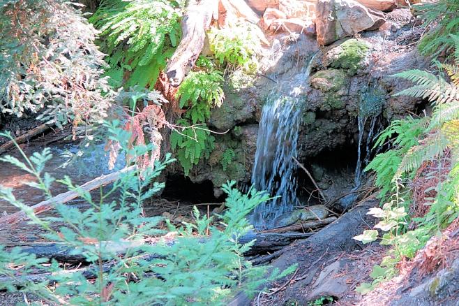 Terrance creek.