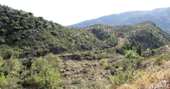 Sespe Alder Creek 10-25-10 (12)