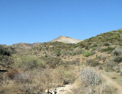 Sespe Alder Creek 10-25-10 (17)