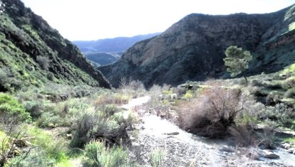 Looking back again from further upstream.
