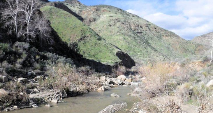 I go around it and continue upstream