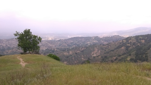 Looking NE towards Santa Clarita.