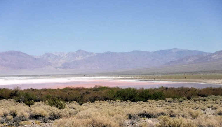 As we descend into the valley we pass a temporary lake. The color is frm algae that can stand the high salt content.